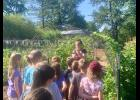 Touring the garden and shelling peas (photo credit: Ann Hines)